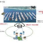 日本の5Gの取り組みに海外も注目!カキの養殖をスマートに!