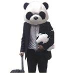 パンダのコスプレ