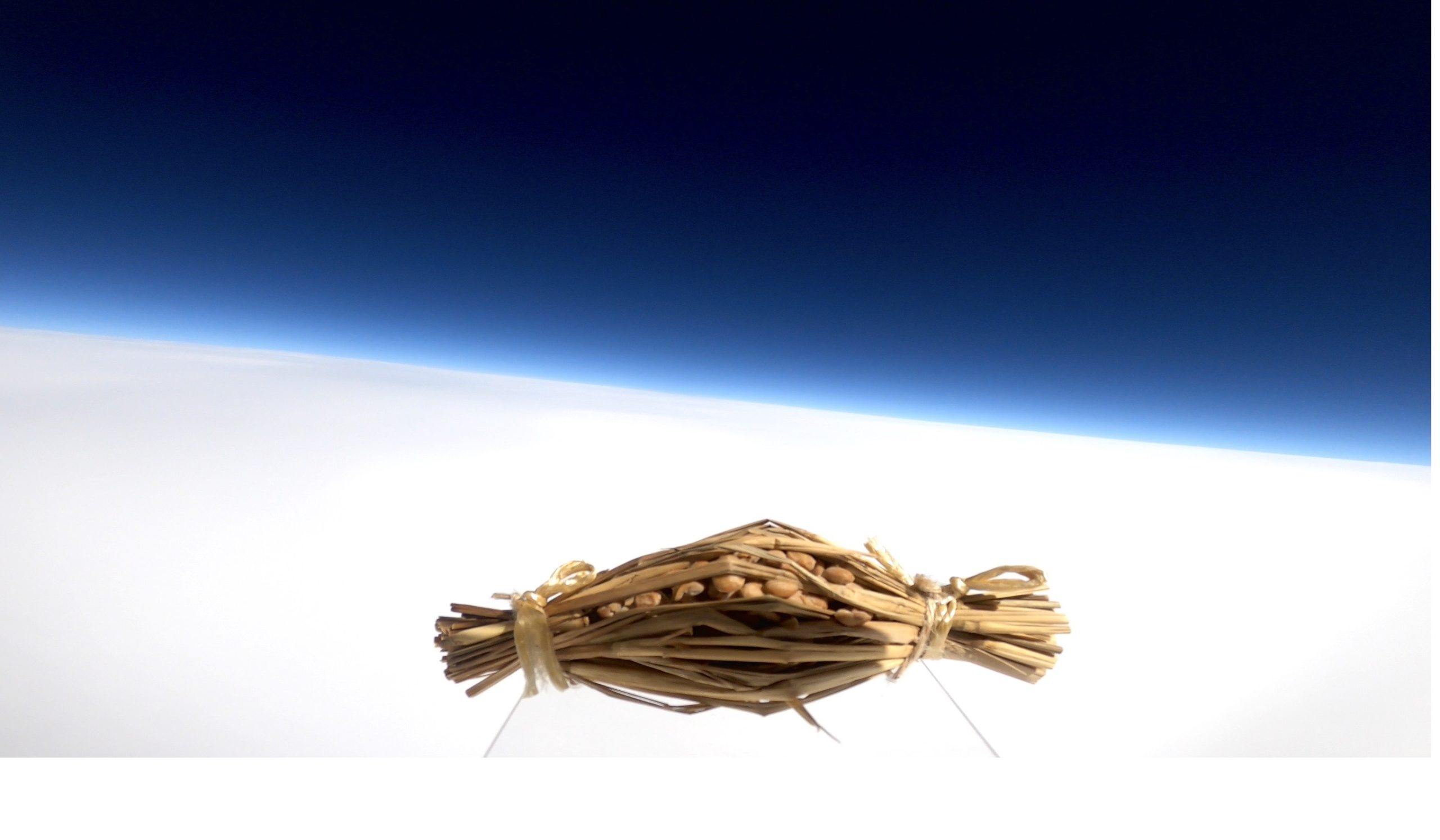 水戸納豆が宇宙に浮いている